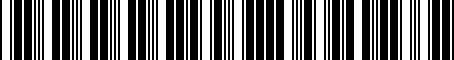 Barcode for 000087316C